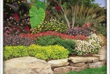 lAnDsCaPiNg / by Tabitha Thibault