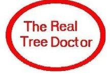 Tree Care Houston