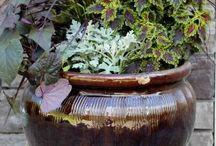 Container Gardening Ideas   Mavis Garden Blog - Ideas for Summer Container Gardening   One Hundred ...
