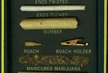 Marijuana Myths & Facts / The truth and nothing but the truth. / by Gay Stoners