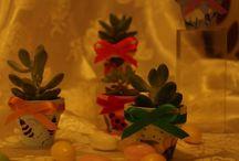 """giardinando / fiori colori piante e profumi il modo migliore di """"respirare """"la vita"""