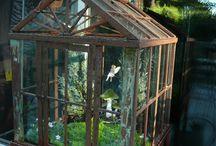 Tiny Gardens under Glass / by Lyndia Slawson