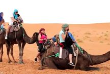 Morocco Travel Agency / Morocco tours to discover the magic of Morocco, the beautiful Atlas mountains, Oases covered with lush palms, centuries old Kasbahs, and Berber villages, Nomad peoples.. a wild landscape made of gorges, and the Sahara desert with its sandy dunes and the million stars.
