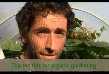 Organic Gardening / Organic Gardening Videos