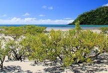 Port Douglas (Australia) / Photos taken April 2013