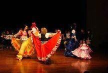 dança cigana no FIDES