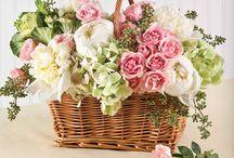 Virágok, köszöntések