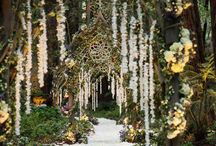 Wedding Ideas / by Amanda LaViolette