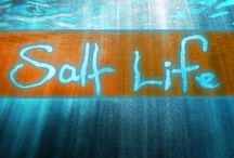 Salt Life / Everything to do with the OCEAN.  The salt, the sand, the water.  Beach activities.  Vacation.  Travel.  You name it #SaltLife #Beach #Ocean