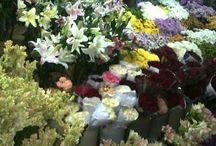 toko bunga potong dan hias jakarta / Order 085716660717