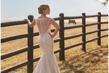 Spruce Mountain Ranch Weddings