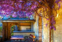 Flower Deco and Gardening / by Diana Sobrino