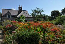 Ierland's Groene Highlights / Ierland is altijd al een zeer sympathieke bestemming voor menige tuinreis geweest!