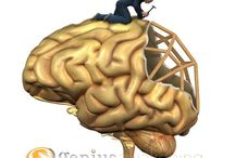 The Brain art