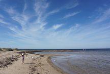 Melbourne Beaches / Best beaches for children in Melbourne