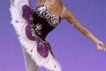 ballet collection(orange・purple・yellow)