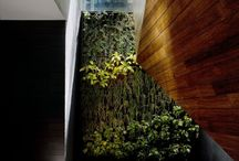 interior - nature