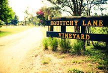 Squitchy Lane Vineyard