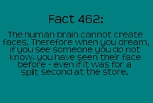 Good to know / Useful things and WTF fun facts  :D