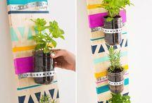 Gardening / indoor & outdoor ideas / by Macy Osman