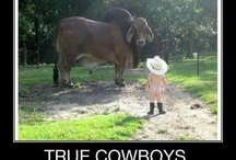 Cowboys & Cowgirls / I have alway's loved all things country, especially those cowboys! / by Teresa Scroggins White