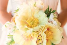 M & G / Lavender, Pale Yellow, Sparkle  - Contemporary wedding ideas and inspiration