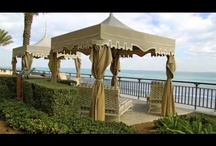 Palm Beach: The High Life at Sea Level / Our favorite spots in Palm Beach, as featured on our stylish guide to the resort town at http://www.thepurplepassport.com / by The Purple Passport
