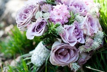Helen and Chris / October 2014 - Simple and stylish with muted dusky tones to include aubergine.