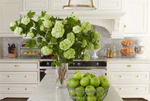 I have a thing for hydrangeas!