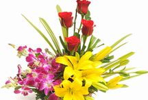 Buy Mother's Day Flowers Online and Send it to Anywhere, India / Buy flowers online with TajOnline.com with different colors and fragrances and send it to India. Flowers are the best way to express your love and with Tajonline you can very easily send flowers to India. You can purchase flowers, flowers vase, flowers bunches and exotic bouquets and flowers bouquets online as per your budget and choice.