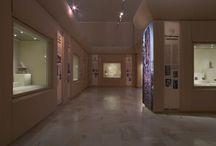 Un po' di Museo / Le sale espositive del Museo Pigorini