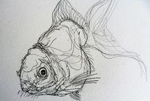 Fish/scales/chamelon/iris