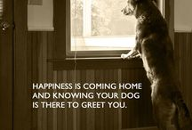 Fav dog pics and quotes