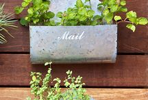 Small gardens / Injecting colour and imagination in to small gardens and small spaces!