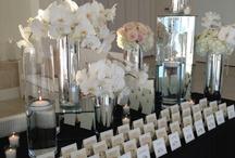 Cheche's wedding / by Liz Donahue