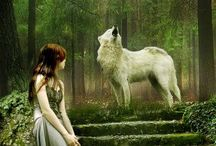 wolf pic`s / wiccan  spirit animals and pets