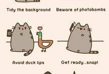 pusheen / weird cats