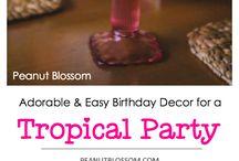 | Birthday & Party Ideas |