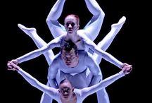 Dance Companies that Inspire Us