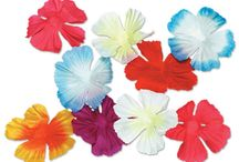 Hawaiian Canopy / by Sweet Dreams Canopies