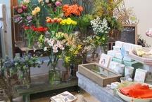 Studio Love / by I Heart Flowers
