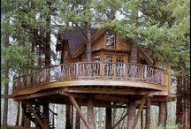 Tree House Love!