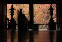 Ancient city Nara