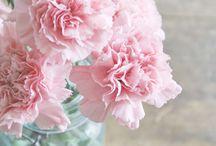 Just  beautiful flower Arrangements