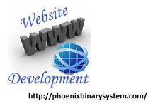 Phoenix Binary System / Web development services