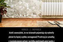pleśń na ścianach