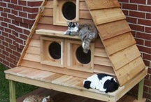 Cool Make Homemade Cat Condo / Make homemade cat condo, tree, or tower.  Tips, ideas and inspiration go make your diy project a success.