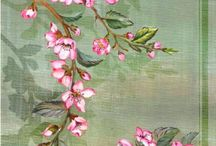 Teckna blommor