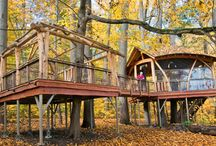 Tree houses / by Donna Jean