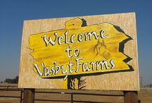 Welcome to Vasbyt Farms / With large stables, great out-ride space and a sand dressage arena you won't ever want to stable your horses anywhere other than at Vasbyt Farms.